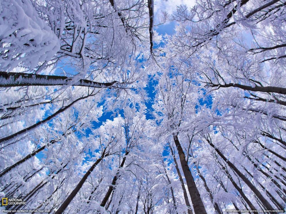 http://bigpicture.ru/wp-content/uploads/2011/02/5-990x742.jpg