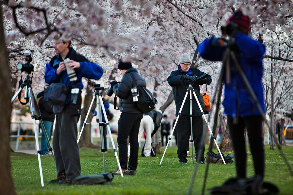 0256 Фотоподборка дня: 30 марта