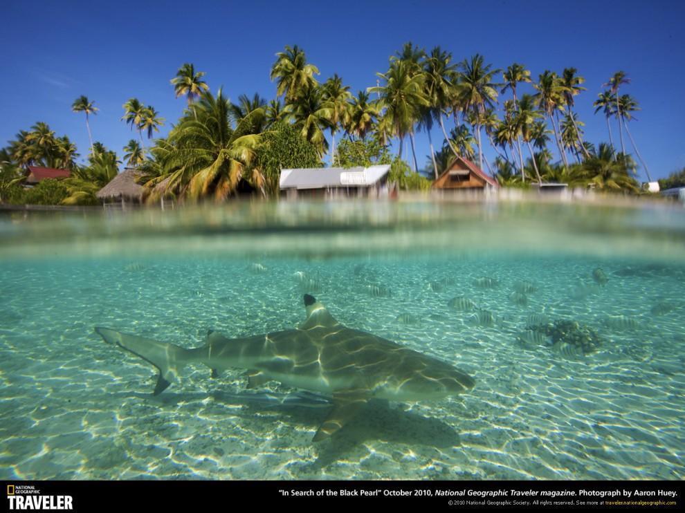 105 990x742 Путешествуй вместе с National Geographic