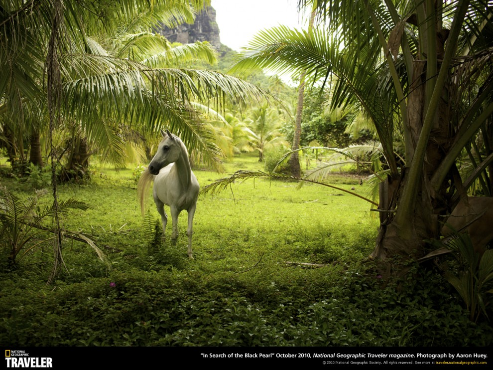 125 990x742 Путешествуй вместе с National Geographic