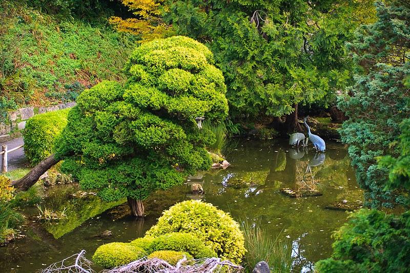 Японский чайный сад в Сан-Франциско