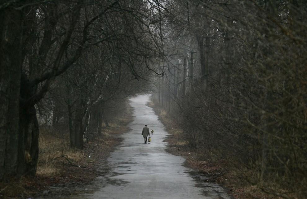 1577 990x643 Чернобыль 26 лет спустя