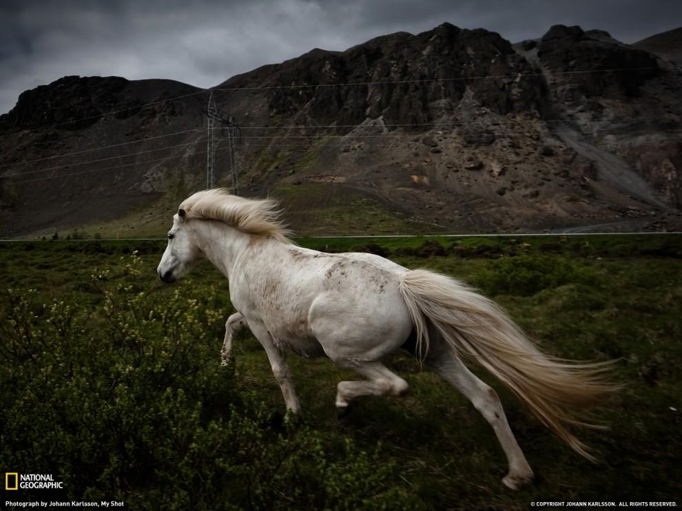 Фото National Geographic за февраль 2011