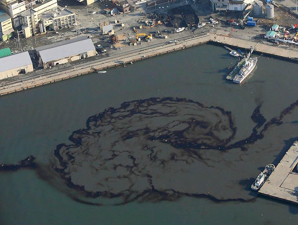 2419 Последствия землетрясения и цунами в Японии