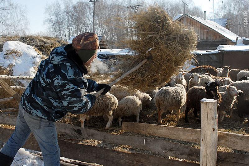 Быт и служба сельского участкового