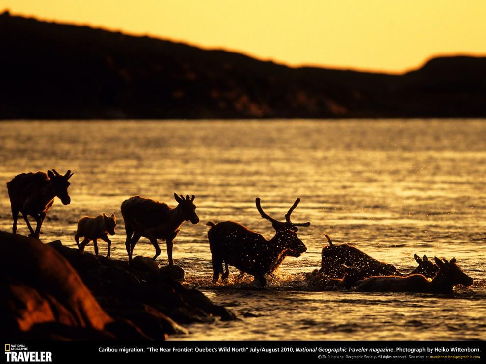 312 990x742 Путешествуй вместе с National Geographic