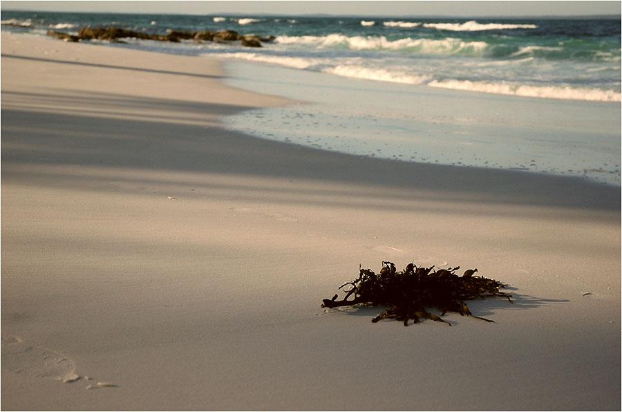 665 Затерянные пляжи