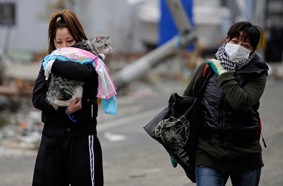 bp50 Япония сегодня: угроза радиации, спасательные работы