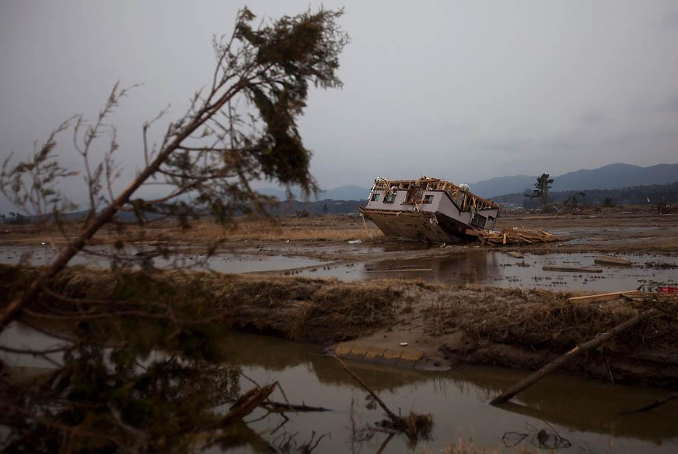 j05 32517765 Япония: через две недели после землетрясения