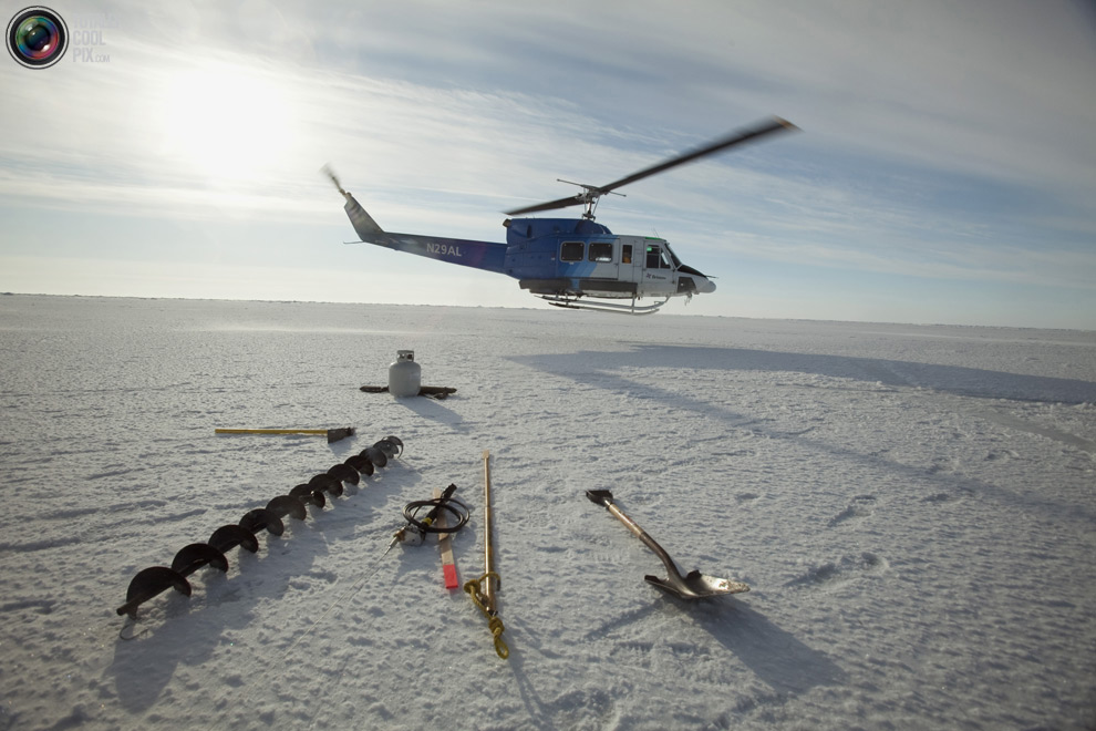 Арктическое приключение