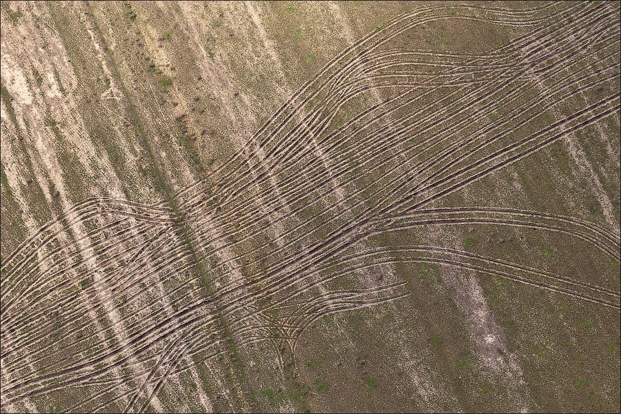 Кожа земли астраханской