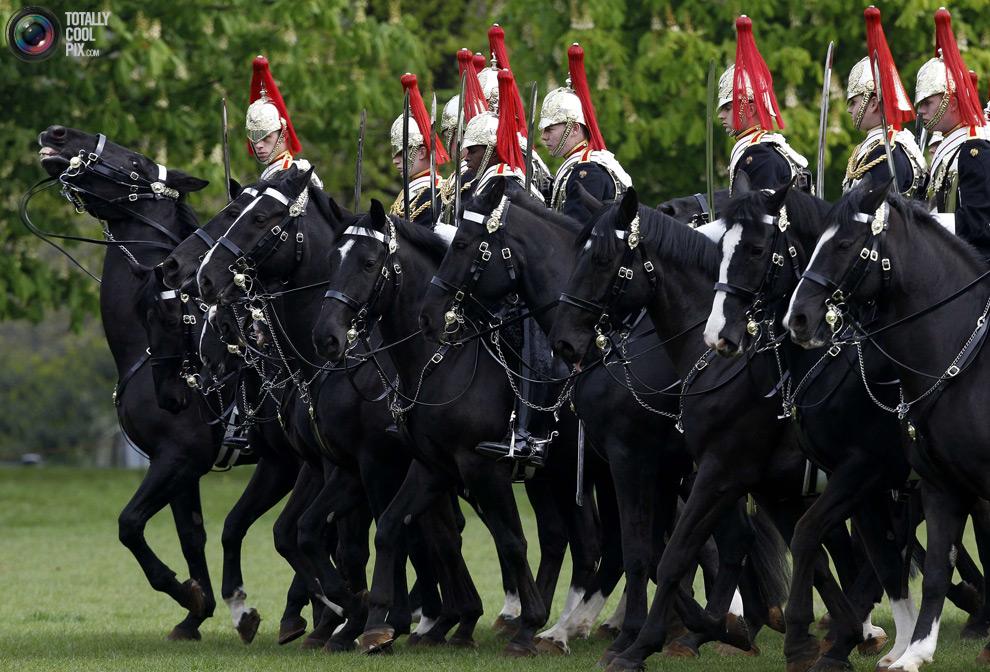 cavalry0 Королевская конная гвардия
