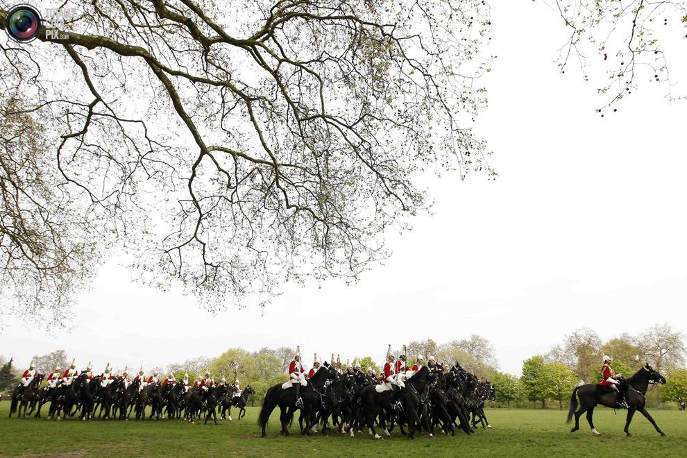 cavalry1 Королевская конная гвардия