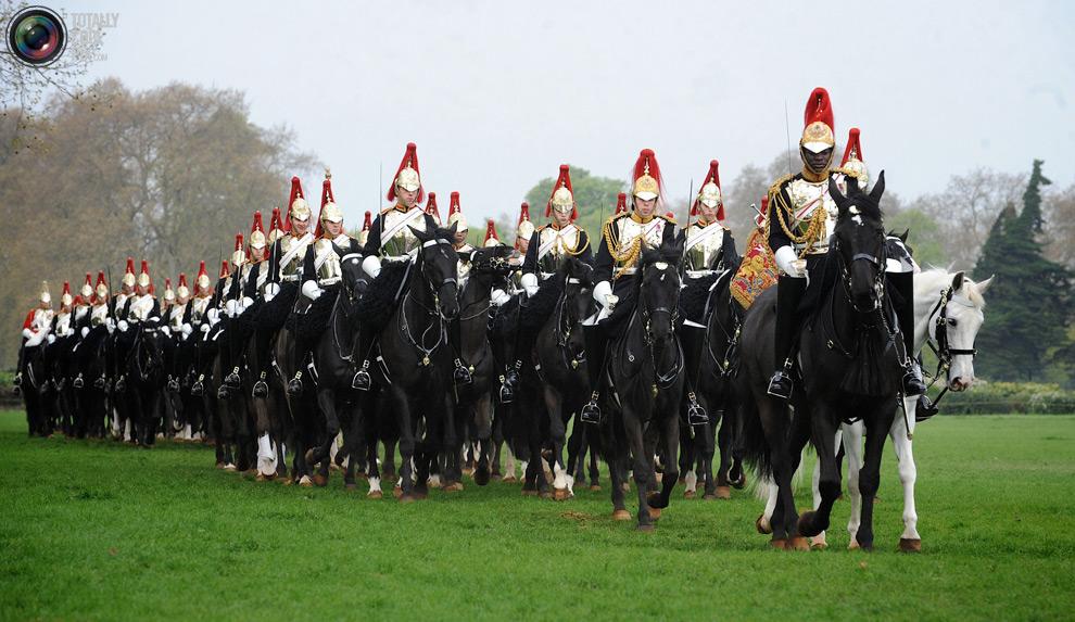 cavalry5 Королевская конная гвардия