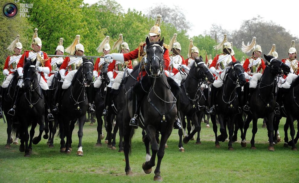 cavalry6 Королевская конная гвардия
