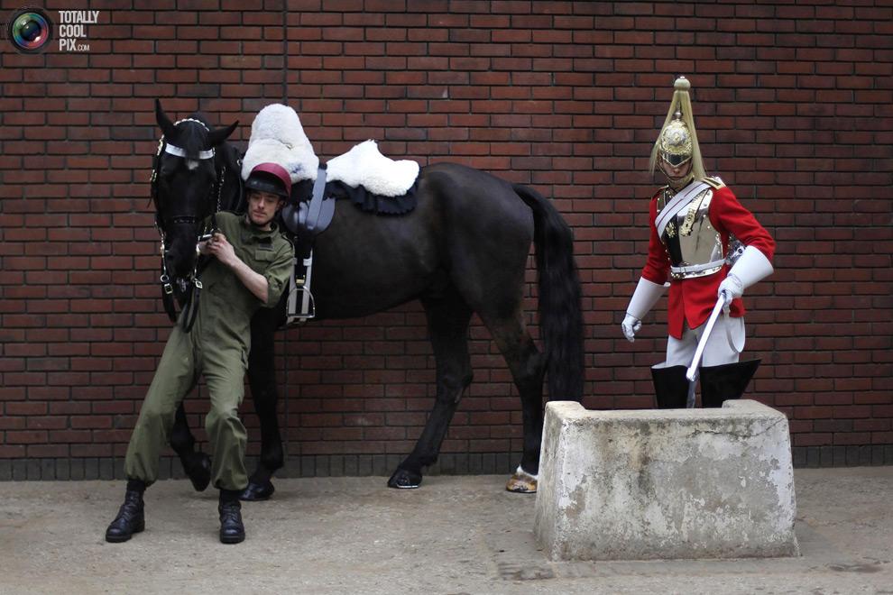 cavalryQ Королевская конная гвардия