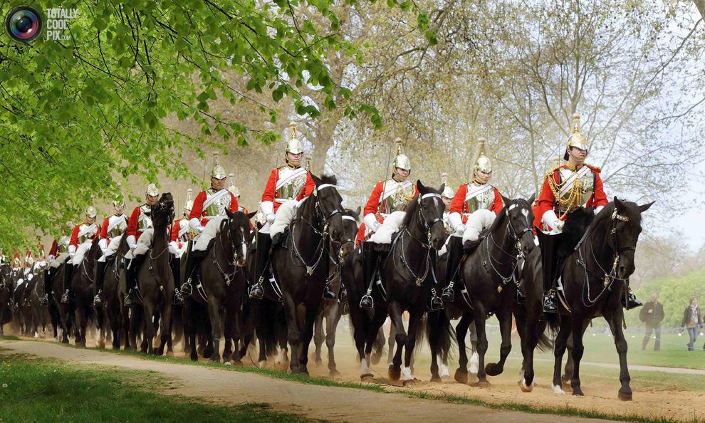 cavalryY Королевская конная гвардия
