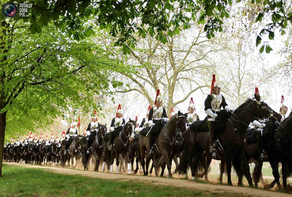 cavalryZ Королевская конная гвардия