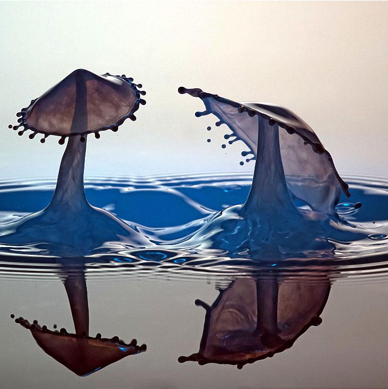 drop11 Брызги и капли на снимках Маркуса Ройгельса