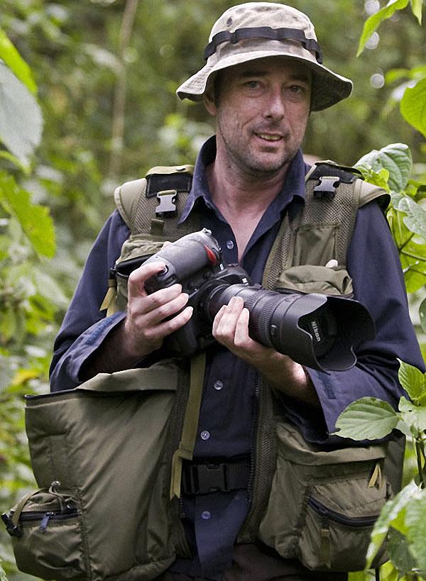 gorillas20 Гориллы: Жизнь на грани