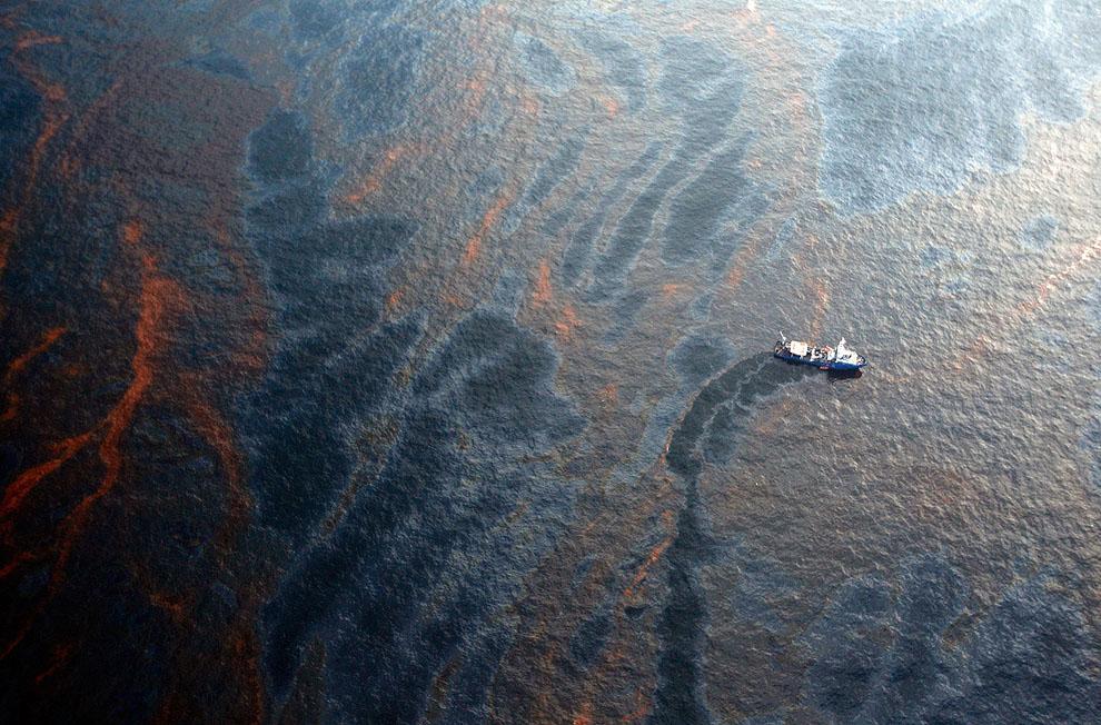 o04 99306371 Разлив нефти в Мексиканском заливе год спустя