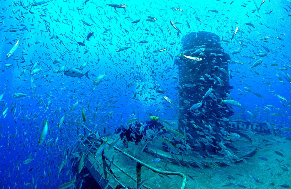 r01 RTR2EELG Искусственные рифы