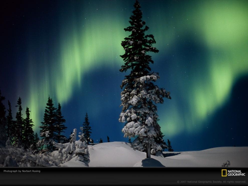 Pola di Alam: Northern Lights