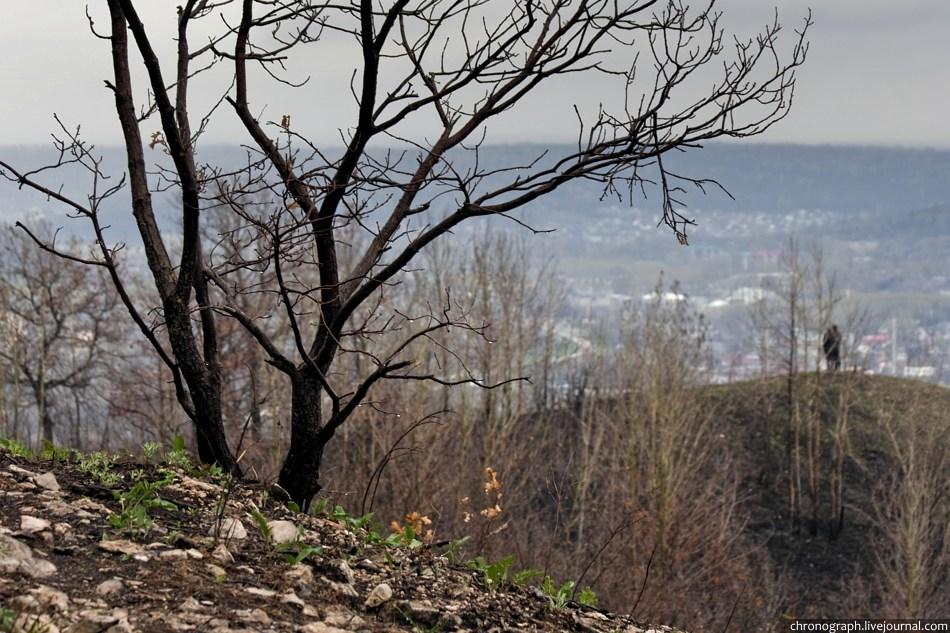 """Жигулевские горы: гора """"Шишка"""""""