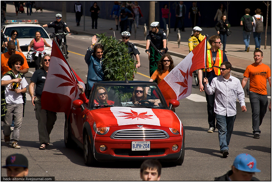 Иду, курю... или Международный Марихуановый Марш. [Май 2011, Канада, Торонто]