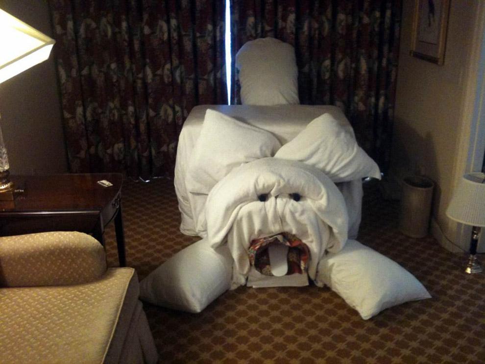 Для кумы, смешные картинки гостиницы