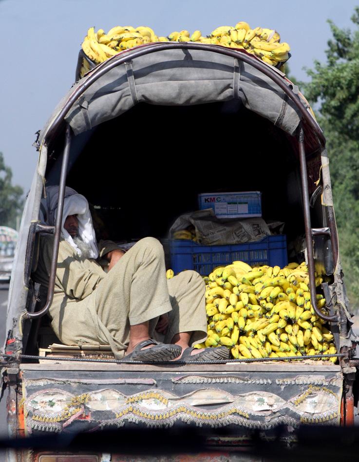 Пакистан 1