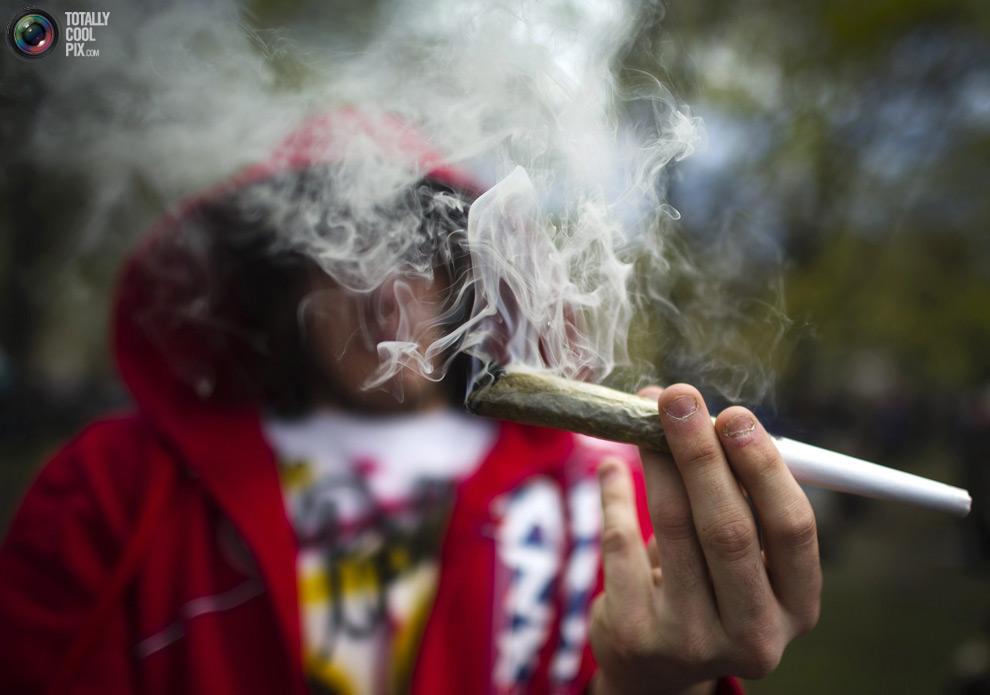 dope 008 Марши за легализацию марихуаны в разных странах мира