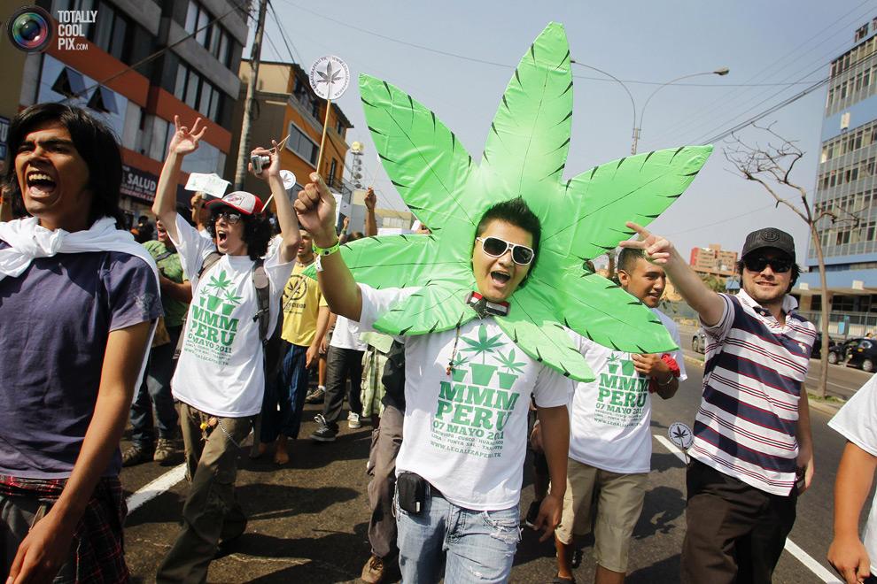 dope 013 Марши за легализацию марихуаны в разных странах мира