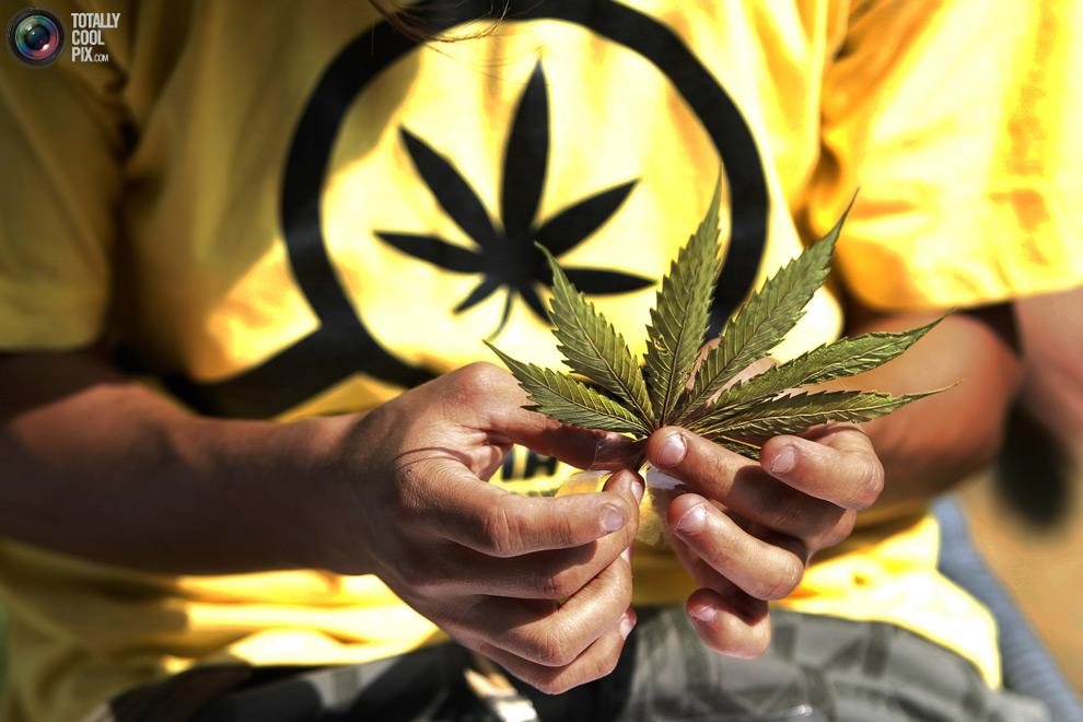 dope 014 Марши за легализацию марихуаны в разных странах мира