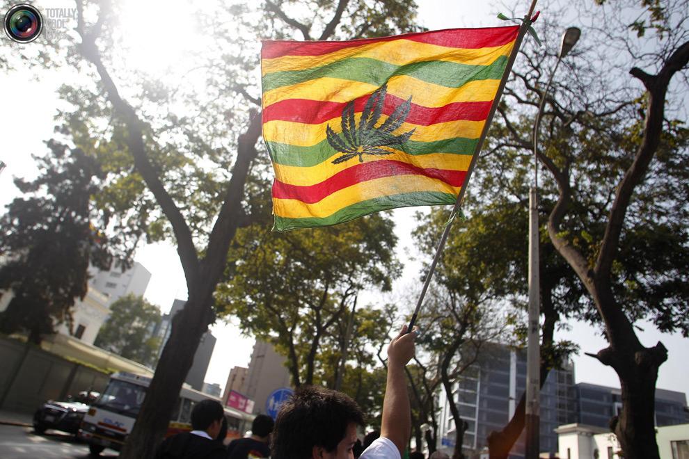 dope 015 Марши за легализацию марихуаны в разных странах мира