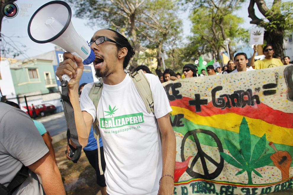 dope 016 Марши за легализацию марихуаны в разных странах мира