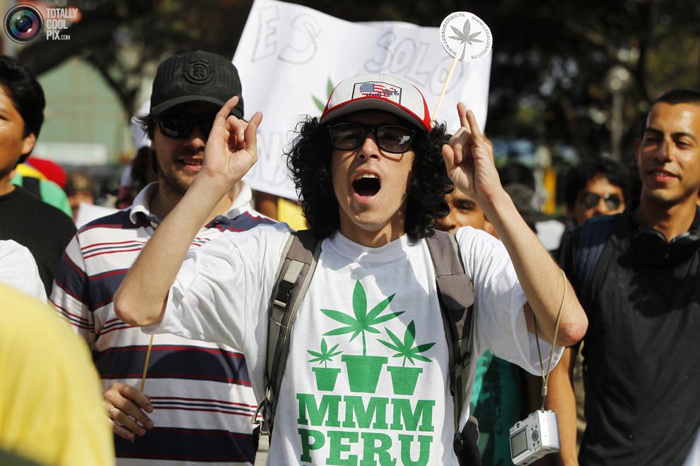 dope 018 Марши за легализацию марихуаны в разных странах мира