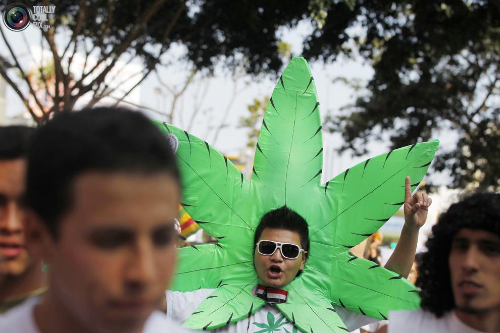 dope 019 Марши за легализацию марихуаны в разных странах мира