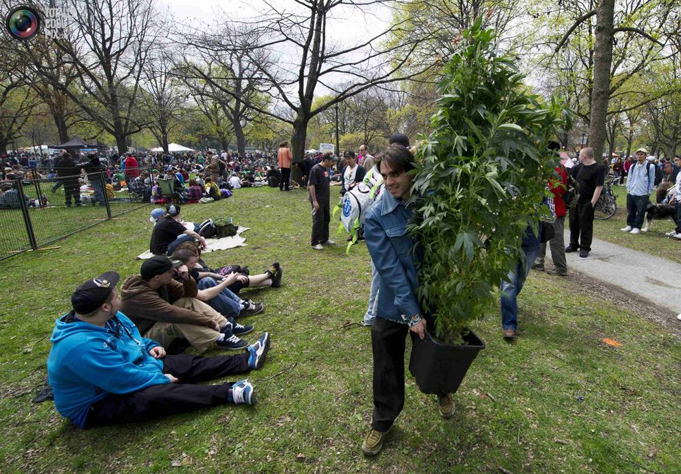 dope 023 Марши за легализацию марихуаны в разных странах мира