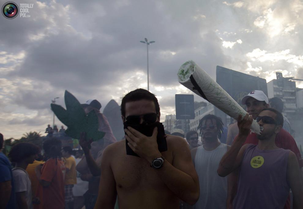 dope 027 Марши за легализацию марихуаны в разных странах мира