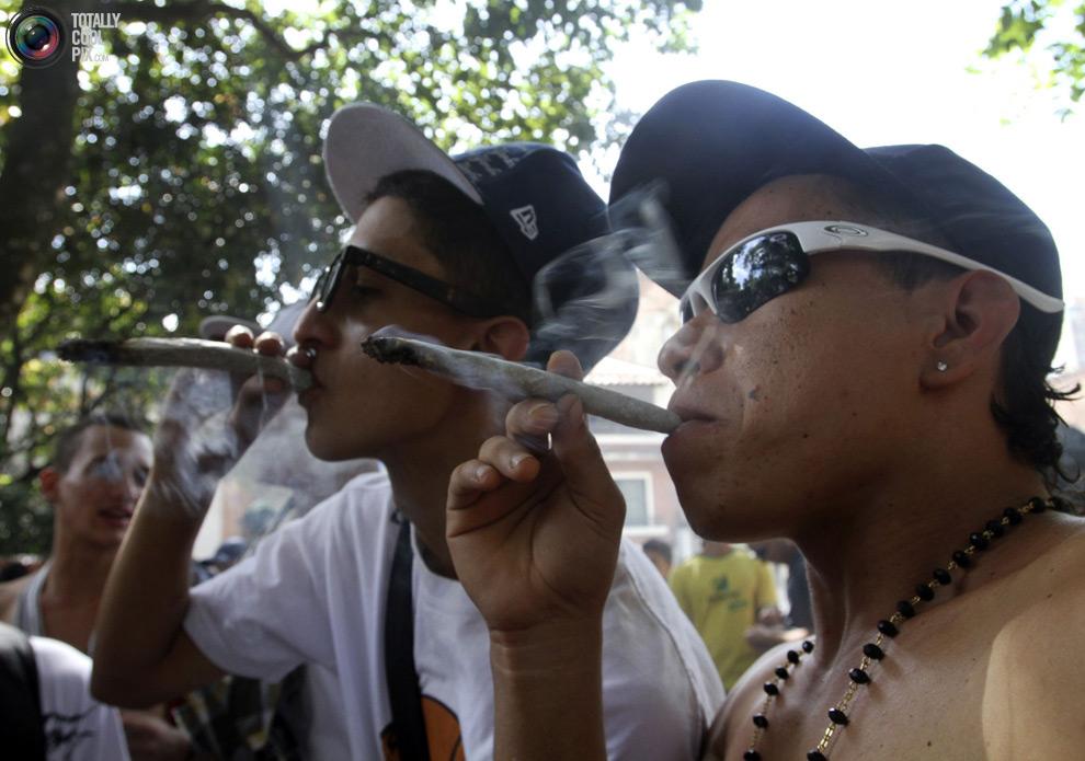 dope 037 Марши за легализацию марихуаны в разных странах мира