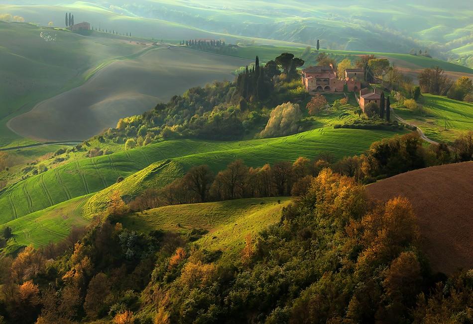 1876 Потрясающие зеленые поля