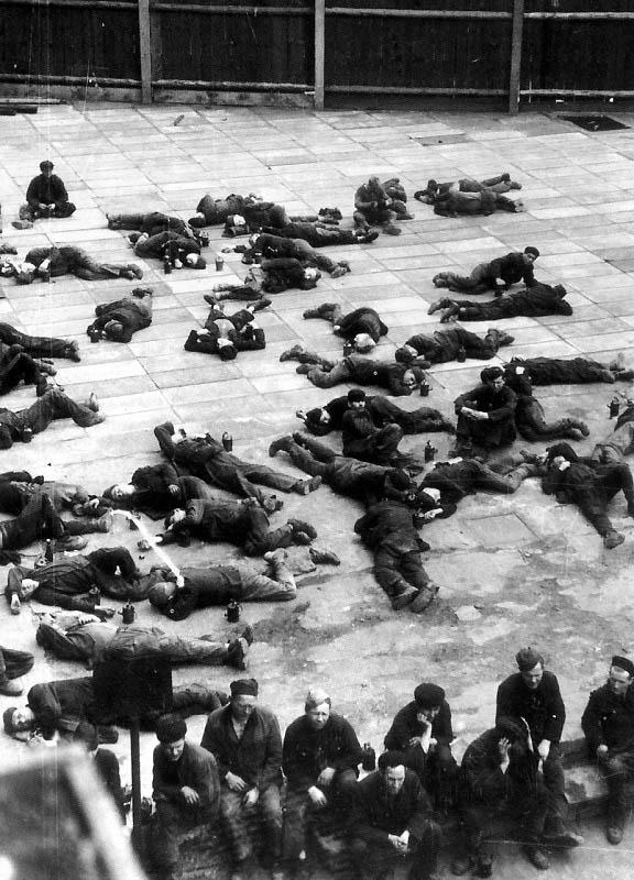 2043 Фото Второй Мировой Войны