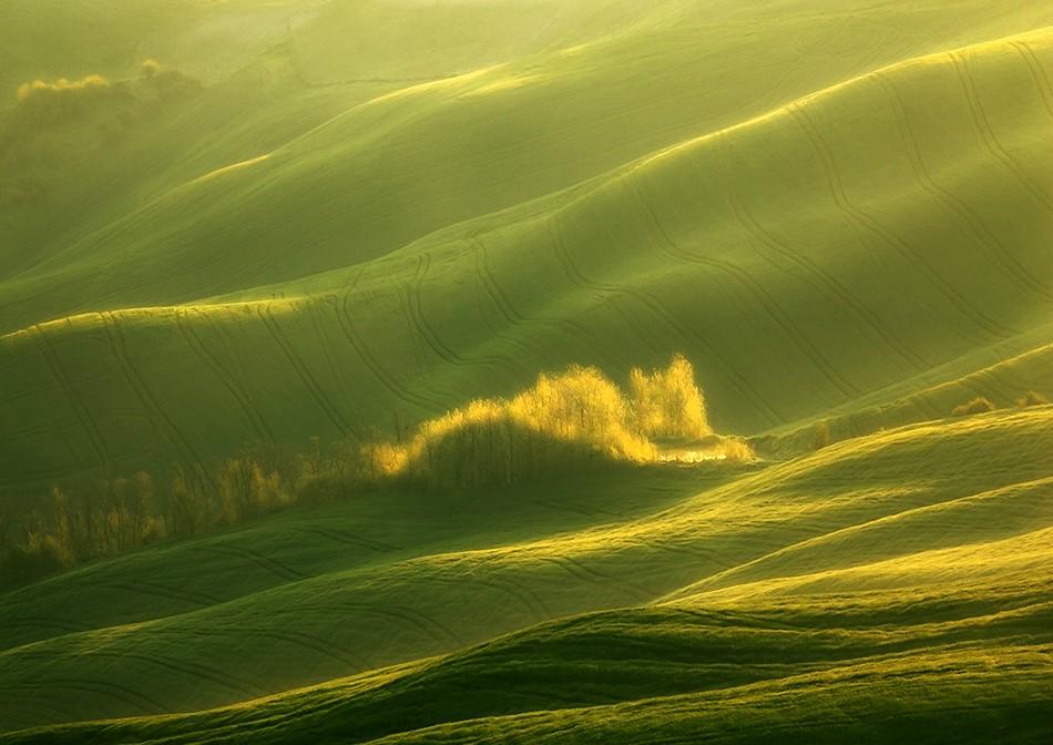 2272 Потрясающие зеленые поля