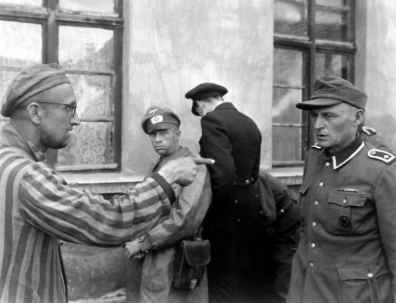 2433 Фото Второй Мировой Войны