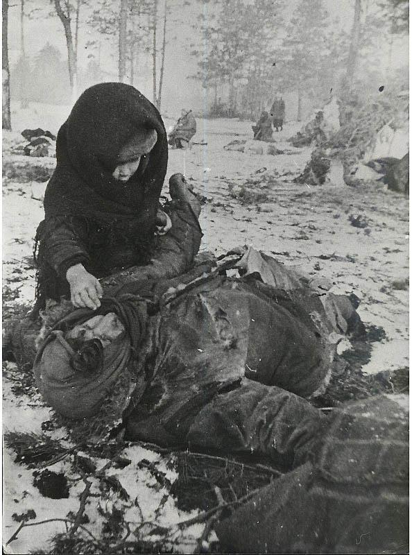 2630 Фото Второй Мировой Войны