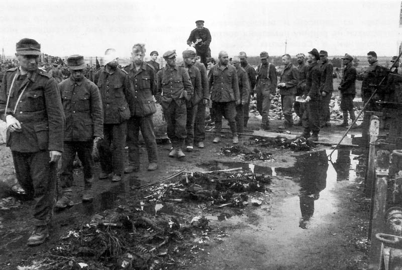 3141 Фото Второй Мировой Войны