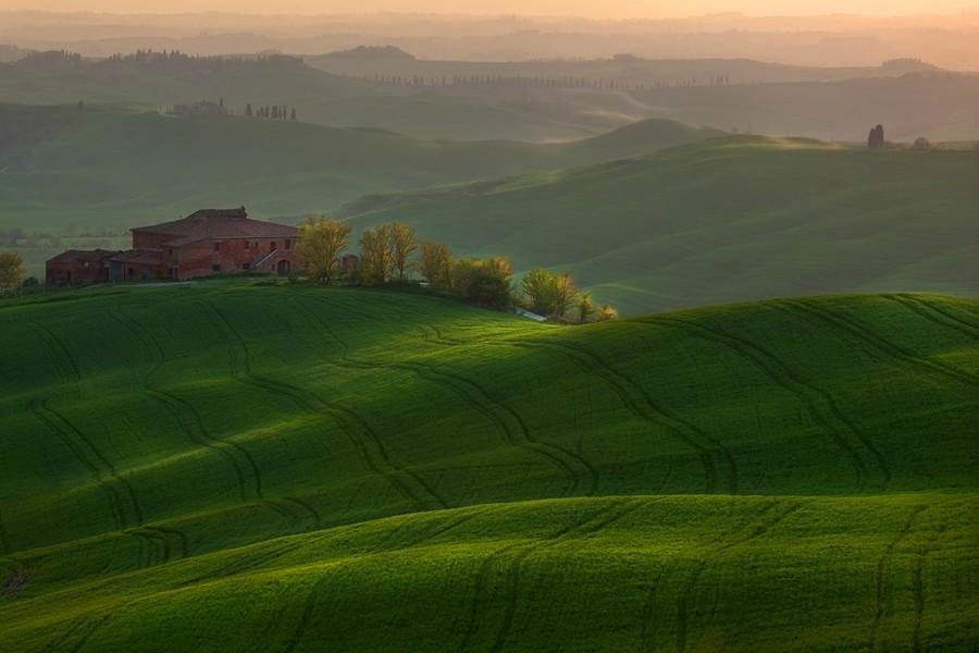 6119 Потрясающие зеленые поля