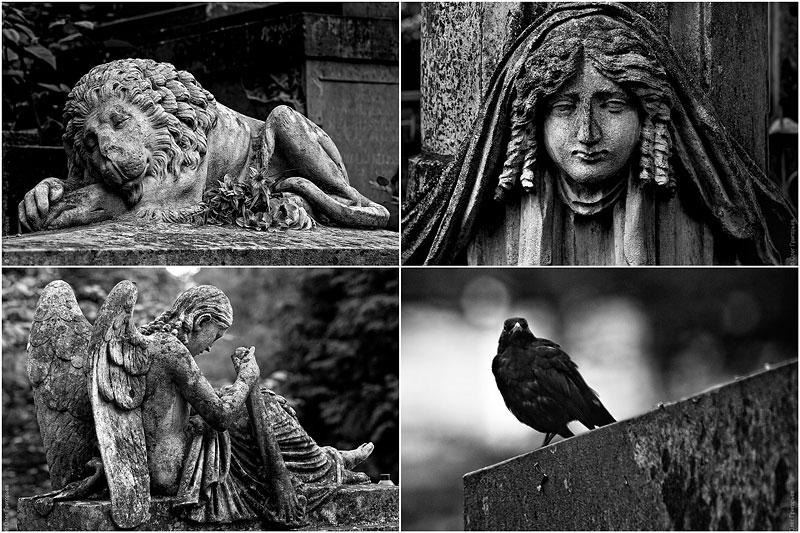 Львов: Лычаковское кладбище