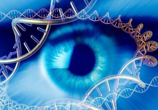 Alfa img - showing dna gene eye color